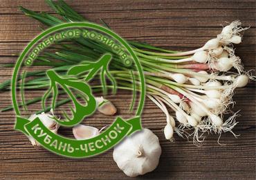 Новые участники выставки «Продукты питания» - Экоферма «Кубань-Чеснок».