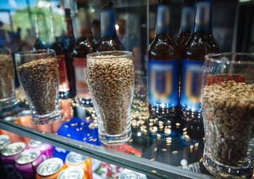 Союз Российских пивоваров обратился к Председателю Правительства РФ в связи со сложной ситуацией на рынке пивоваренного солода и ячменя.
